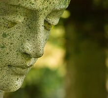 Remembrances by OzPhoto
