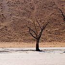Ghosts of the Deadvlei III by Jennifer Sumpton