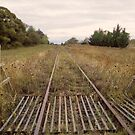 Old Railway Track by Laura Sykes