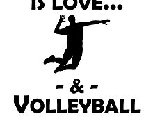 Love And Volleyball by kwg2200