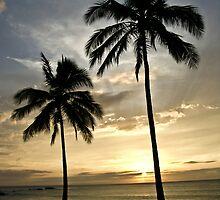 Hawaiian Sunset under the coconut trees by Ciccio349