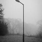 Solitary  by Rhys Herbert