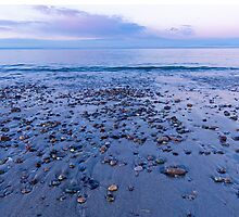 Sandy Neck Beach Rocks by FrigidLight