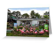 Flamingo Paradise Greeting Card