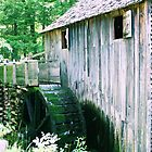 Cades Cove Gristmill by goldnzrule
