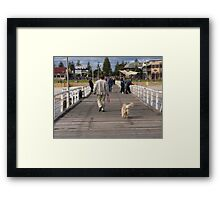 Retriever following his owner off Henley Beach Jetty, Adelaide. S.A. Framed Print
