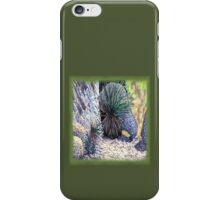 c10-Desert Spoons with Boulders iPhone Case/Skin