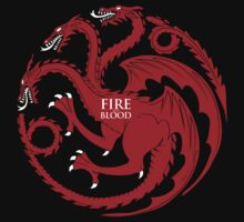 Fire and Blood by ShirThrones