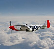 P51 Mustang Gallery - No4 by warbirds