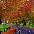 """Autumn In Eastern Park"" by Phil Thomson IPA"