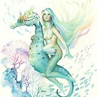 Sea Horse By Scot Howden by Scot Howden
