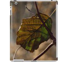Changing Color for Fall iPad Case/Skin