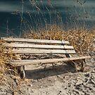 Beach Bench  by KSKphotography