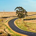 Road to Somewhere by Alan Robert Cooke