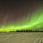 The Aurora Hunters by Kristin Repsher