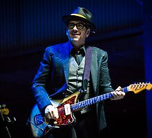 Elvis Costello #2 by Natalie Ord