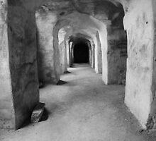 Underneath Qutub Shahi Tomb by Andrew  Makowiecki