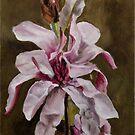 Pink Magnolia by JolanteHesse