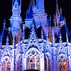 Cinderella's Castle by Mark Fendrick