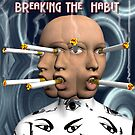 Breaking The Habit by Ann Morgan