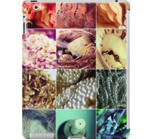Facets of a fairytale iPad Case/Skin