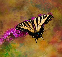 Tiger Swallowtail Butterfly on Butterfly Bush by Diane Schuster