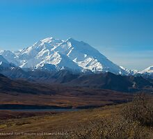 Denali with Toklat River far below by Jan Timmons