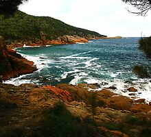 sleepy bay, freycinet peninsula. tasmania, australia by tim buckley | bodhiimages