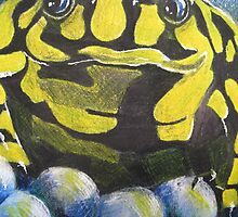 Australian Endangered Corroboree Frog Guarding Eggs by Heatherian