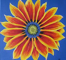 Gazania Fine Art by Heather Holland by Heatherian