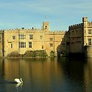 Leeds Castle by larry flewers