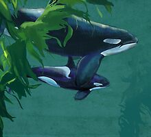 Killer Whale  by DustWrites