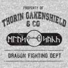 Thorin Oakenshield and company Dragon fighting department by Unicorn-Seller