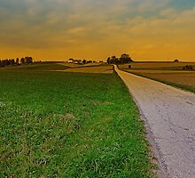 Country road on a summer afternoon | landscape photography by Patrick Jobst