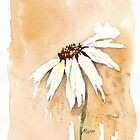 One White Daisy by Maree  Clarkson