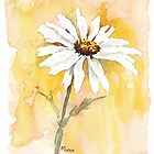 One perfect daisy by Maree  Clarkson