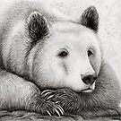 Brooding Bear by Mariya Olshevska