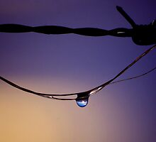 The world on a wire by kurrawinya