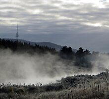 Autumn morning in Canberra by Tim Coleman