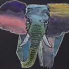 'Colourful Elephant' by jansimpressions