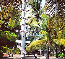 Choices, Palm Island, Caribbean by JCMM