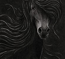 Night Horse by Mariya Olshevska