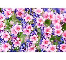 Fairytale Flowers Photographic Print