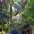 Blue Doored Oasis  by emmawind