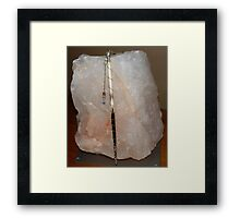 Porcupine Quill pendant Framed Print