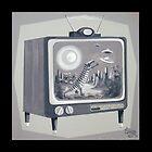 Kooky TV by elgatogomez