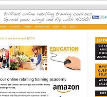 Basic Methods on How to Sell Online  by tgstgsj23