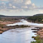 Olifants River by Karine Radcliffe