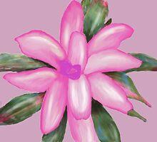 Painted Pink Bromeliad by Rosalie Scanlon