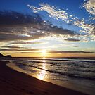 A New Day -  Avoca Beach by Of Land & Ocean - Samantha Goode